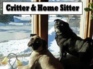 Critter & Home Sitter